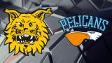 16 - Tampere Cup: Ilves - Pelicans 12.8.