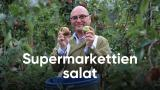 Supermarkettien salat
