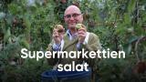 Supermarkettien salat