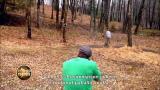 2 - Vihollisemme puut