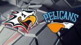 Sport - Pelicans 21.11.