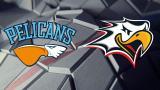1049 - Pelicans - Sport 8.9.