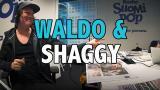 Aamulypsy-video: Waldo & Shaggy